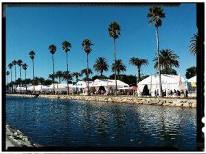 Bacalao Festival 1